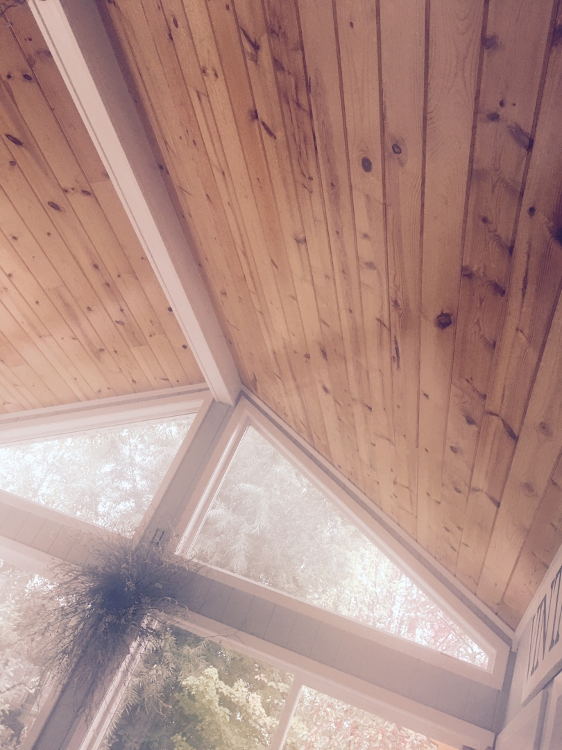 sunroom-ceiling