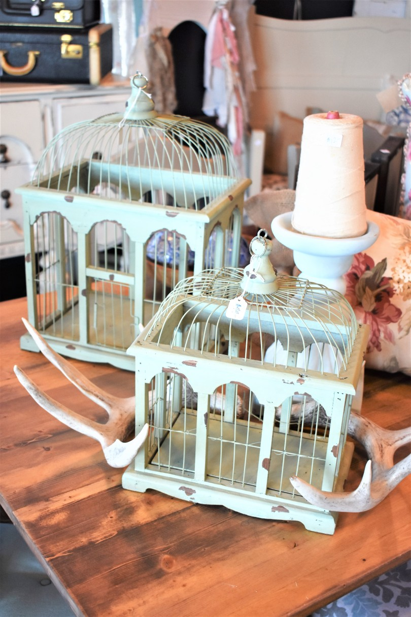 Bird Cages 2