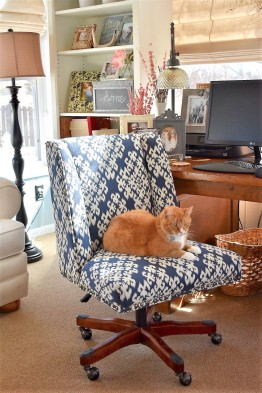 Kip in Chair